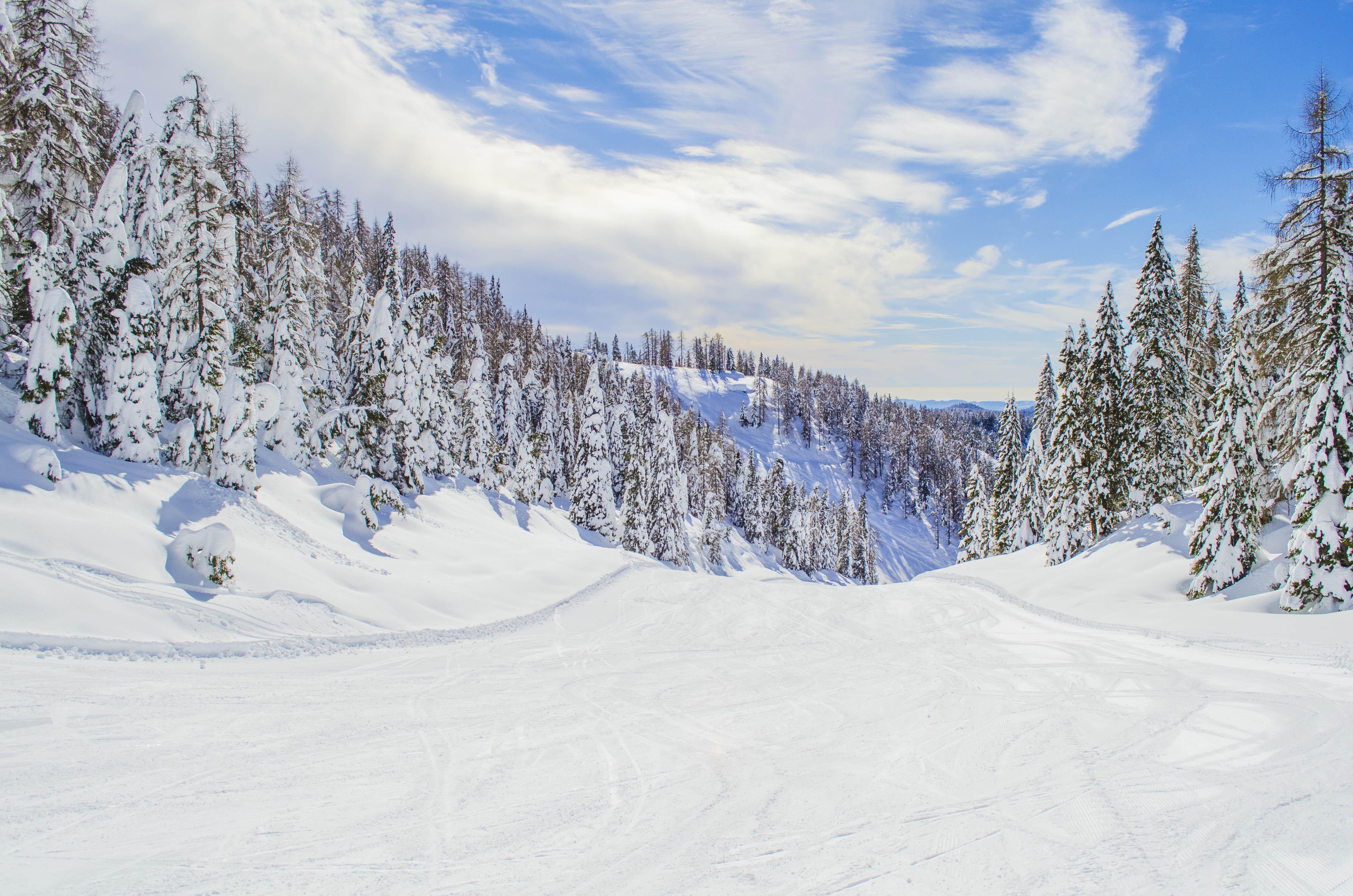 Nevica e fioccano le offerte per febbraio asiagoneve for Asiago offerte