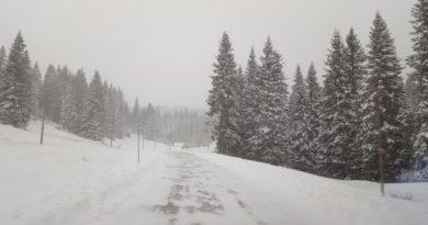 È arrivata la neve! Altopiano di Asiago imbiancato