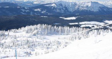 Neve in Veneto a Dicembre 2020
